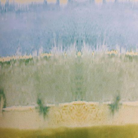3529 Verdunkler grün